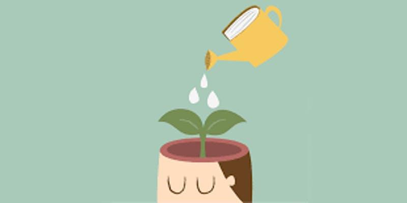 watering a brain