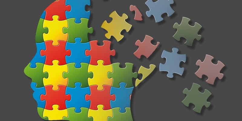 puzzle pieces making up a brain